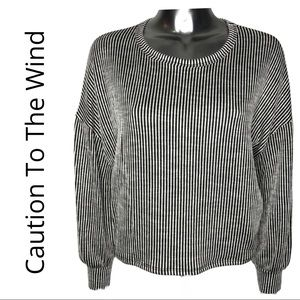 Caution to the Wind Vertical Stripe Top